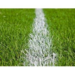 Farba do malowania linii na boisku